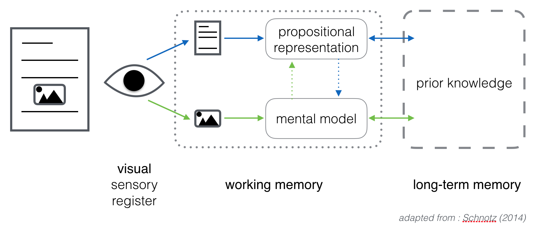 Visual Processing adapted from Schnotz (2014)