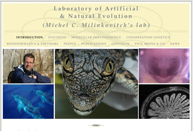 Laboratory of Artificial,& Natural Evolution,,(Michel C. Milinkovitch's lab)